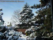 Tombe la neige sur les Vosges 10