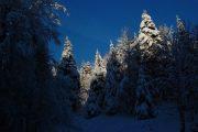 Tombe la neige sur les Vosges 4