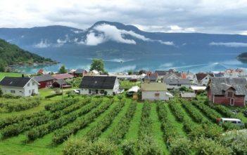 Voyage en Norvège en été : de Bergen au Lofoten et au Cap Nord 11