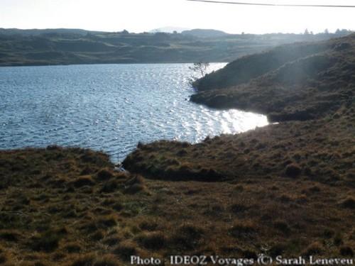 Nouvel An en Irlande ; ambiance festive et esprit cottage 17