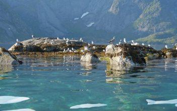 Voyage en Norvège en été : de Bergen au Lofoten et au Cap Nord 16