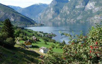 Voyage en Norvège en été : de Bergen au Lofoten et au Cap Nord 4