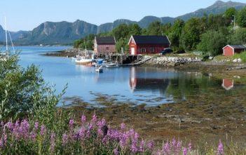 Voyage en Norvège en été : de Bergen au Lofoten et au Cap Nord 14