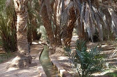 Vacances au Maroc : De Boudnib à Errachidia, randonnées et rencontres chaleureuses 14