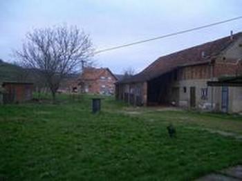 Loger à la ferme chez Maryla à Ratkovica en Slavonie ; une vraie rencontre conviviale 11