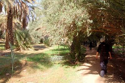 Vacances au Maroc : De Boudnib à Errachidia, randonnées et rencontres chaleureuses 15