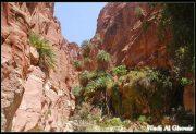 Quelques photos de Jordanie et de Petra 16