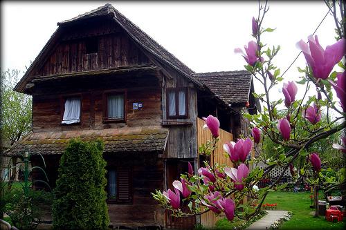 Cigoc maison traditionnelle lonjsko polje