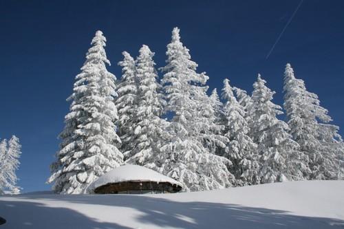 baviere neige lac montagne