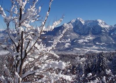 Alpes enneigées Bischofwiesen (Haute Bavière)