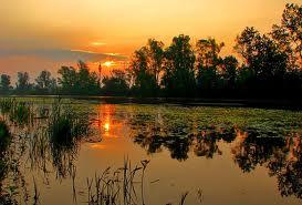 La Croatie des parcs nationaux et naturels ; paradis des amoureux de nature 18