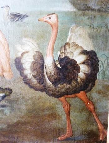 Château Nymphenburg (Munich) : Amalienburg et ses tableaux animaliers 5