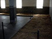 Camp de concentration nazi de la Croix Rouge à Nis (Serbie Sud) 1