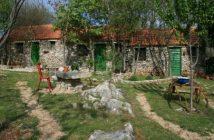 Agrotourisme à Krka en Croatie : logement à la ferme authentique et convivial près de Sibenik 20