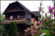 Cigoc Selo Roda, village des cigognes à Lonjsko Polje (Croatie Centrale) 2
