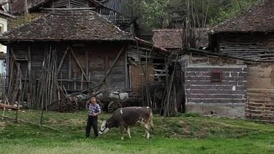 Serbie Mokra fermier
