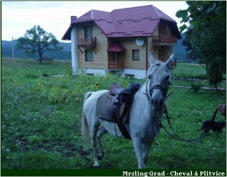 Agrotourisme croatie plitvice Mrzlin Grad