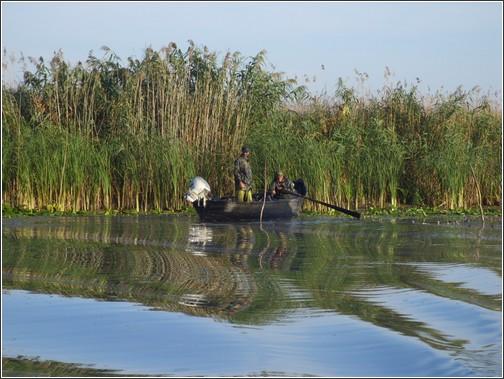 delta danube roumanie