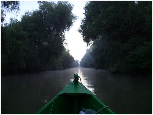 Delta Danube en Roumanie