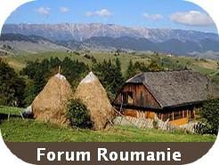 forum roumanie