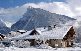Epilobes maison d'hiver