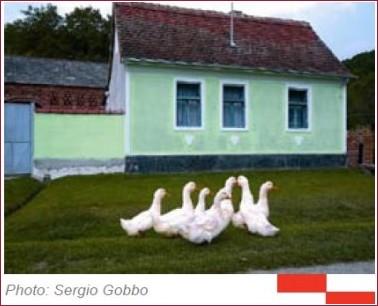 Bistriki agrotourisme croatie lonjsko polje