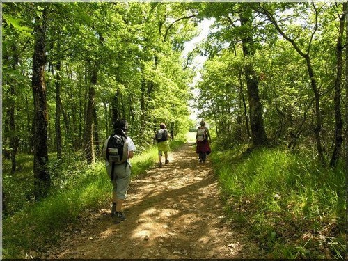 randonnée chemins de saint jacques de compostelle