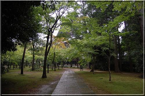 Kyoto Temple Shinnyo-do
