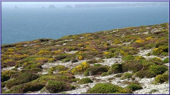Tourisme bretagne presqu le de crozon beaux paysages - Office du tourisme de camaret sur mer ...
