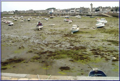 roscoff vieux port maree basse