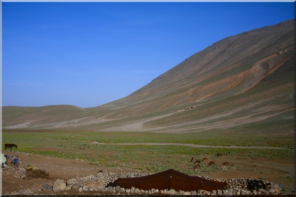 Maroc chez les nomades ait atta