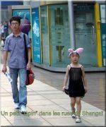 Paris pekin petit lapin dans les rues de shanghai