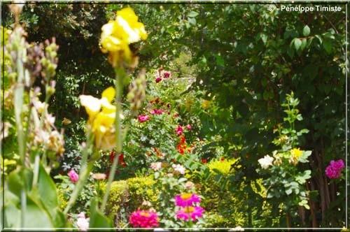 grenade alhambra fleurs