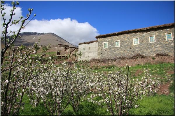 maroc le printemps berbere