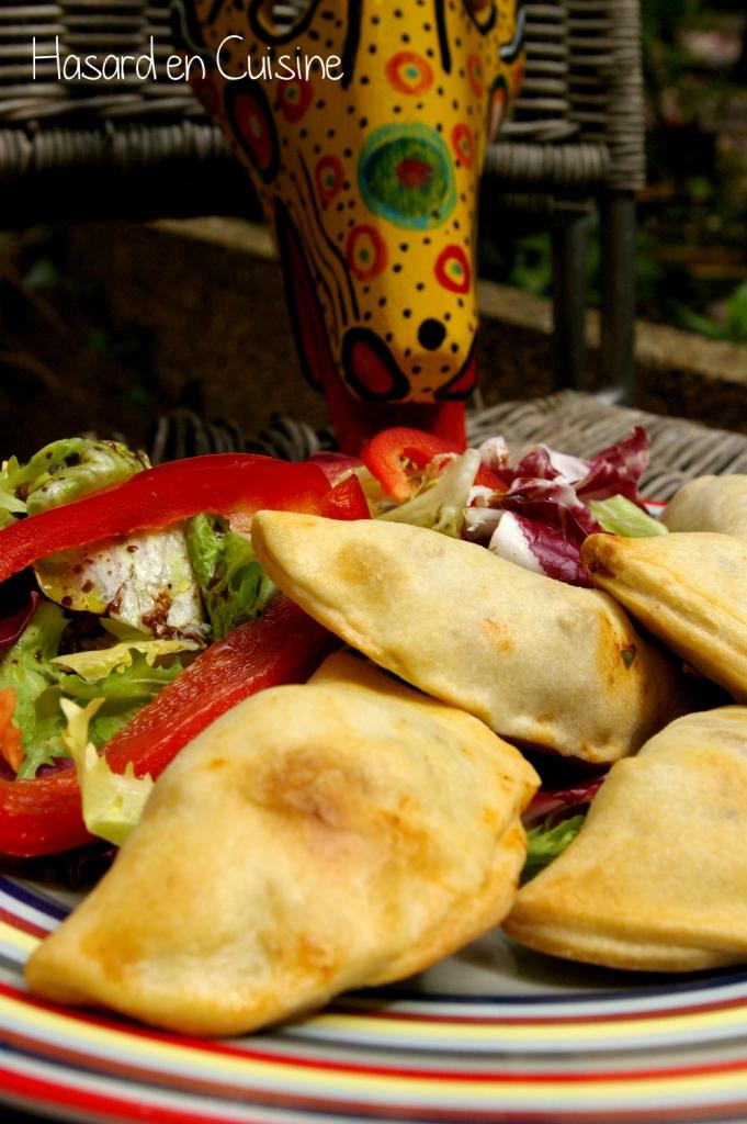 Empanadas à la Mexicaine ; rapides, faciles et délicieuses (Recette mexicaine) 1