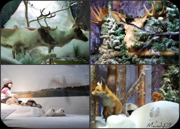 animaux vitrines de noel stockholm