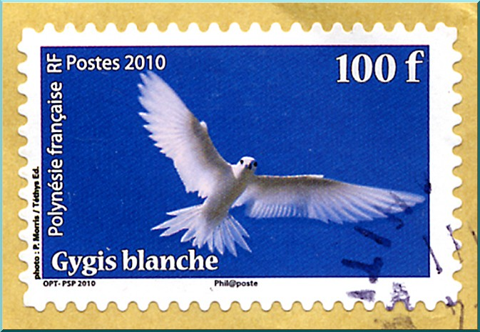 gygis blanche polynesie timbre
