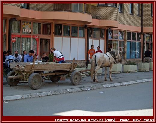kosovska mitrovica charette