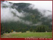 Le Parc National Retezat dans les Carpates ; la nature roumaine classée à l'UNESCO 22