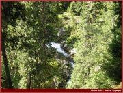 Le Parc National Retezat dans les Carpates ; la nature roumaine classée à l'UNESCO 34