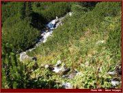 Le Parc National Retezat dans les Carpates ; la nature roumaine classée à l'UNESCO 31