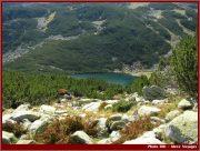 Le Parc National Retezat dans les Carpates ; la nature roumaine classée à l'UNESCO 23