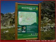 Le Parc National Retezat dans les Carpates ; la nature roumaine classée à l'UNESCO 20