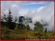 Le Parc National Retezat dans les Carpates ; la nature roumaine classée à l'UNESCO 12