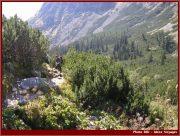 Le Parc National Retezat dans les Carpates ; la nature roumaine classée à l'UNESCO 32