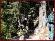 Le Parc National Retezat dans les Carpates ; la nature roumaine classée à l'UNESCO 36