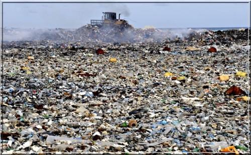 maldives ordures
