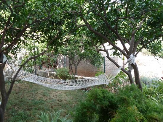 studio podaca jardin