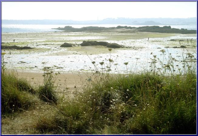 ile Callot baie de la Penze
