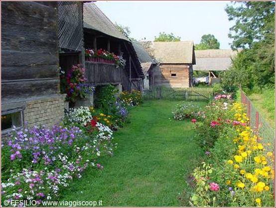 lonjsko polje jardin en fleur